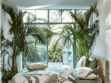 Cozy Tropical Bedroom Decorating Ideas