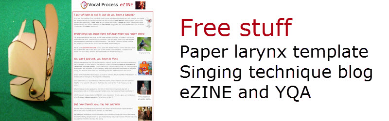 Free stuff from Vocal Process