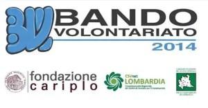 Bando Volontariato 2014