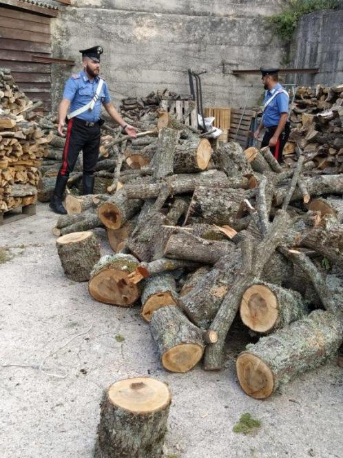 Tentato furto di legna - arresti CC Mistretta (3)