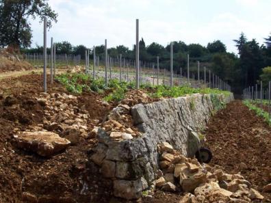 Wiederaufbau der Trockenmauern