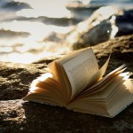 Livros: Lidos em Fevereiro