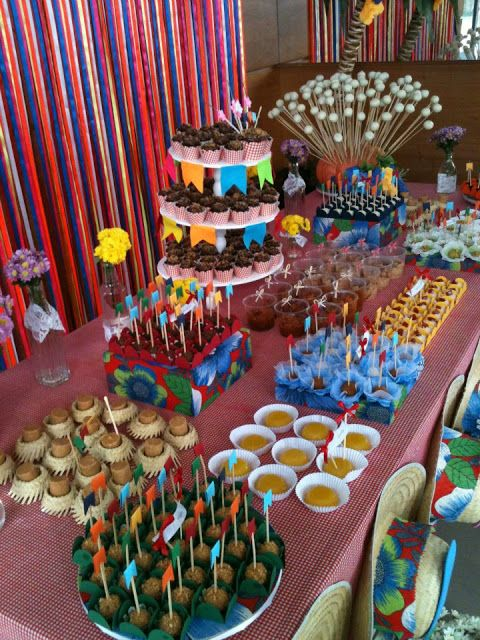 festajunina_voeprecisadecor01