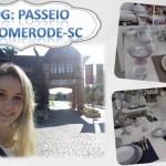 Vídeo: Vlog na loja da Porcelanas Schmidt +Passeio em Pomerode-SC