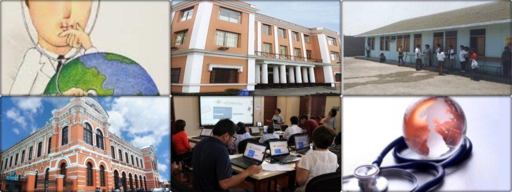 La Enseñanza de la Salud Pública en las Escuelas Profesionales de la Facultad de Medicina Humana -UNMSM
