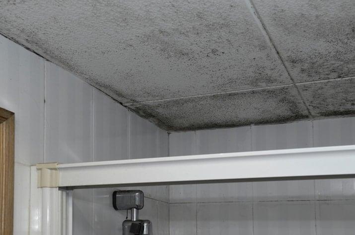 Schimmel Verwijderen Muur : Schimmel in badkamer oorzaken hoe schimmel verwijderen