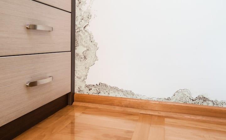 Schimmel In Slaapkamer : Schimmel in de slaapkamer oorzaken oplossingen advies prijs
