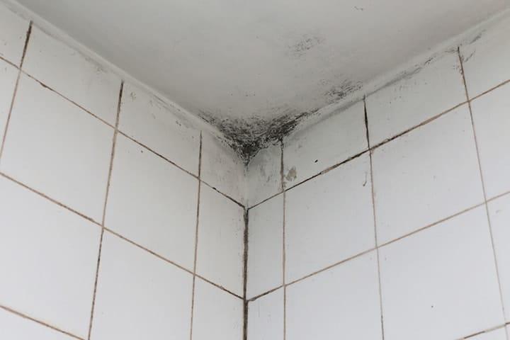 Zeer Vocht in Badkamer: Oplossingen om dit te Voorkomen en te Bestrijden &AJ05