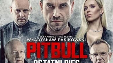 Filmy VOD, Pitbull. Ostatni pies, Śmierć Stalina, Taxi 5