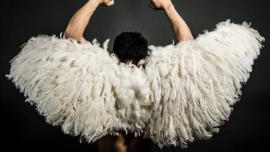 Showmax, Superbohater, Polki serial, Dresiarz z skrzydłami