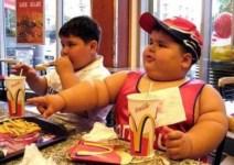 overgewicht nederland
