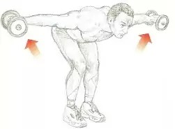 bent over raises schouders