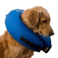 procollar hundvård