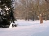 Impressionen aus dem Greizer Park
