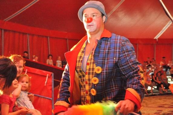 Clown Pauli