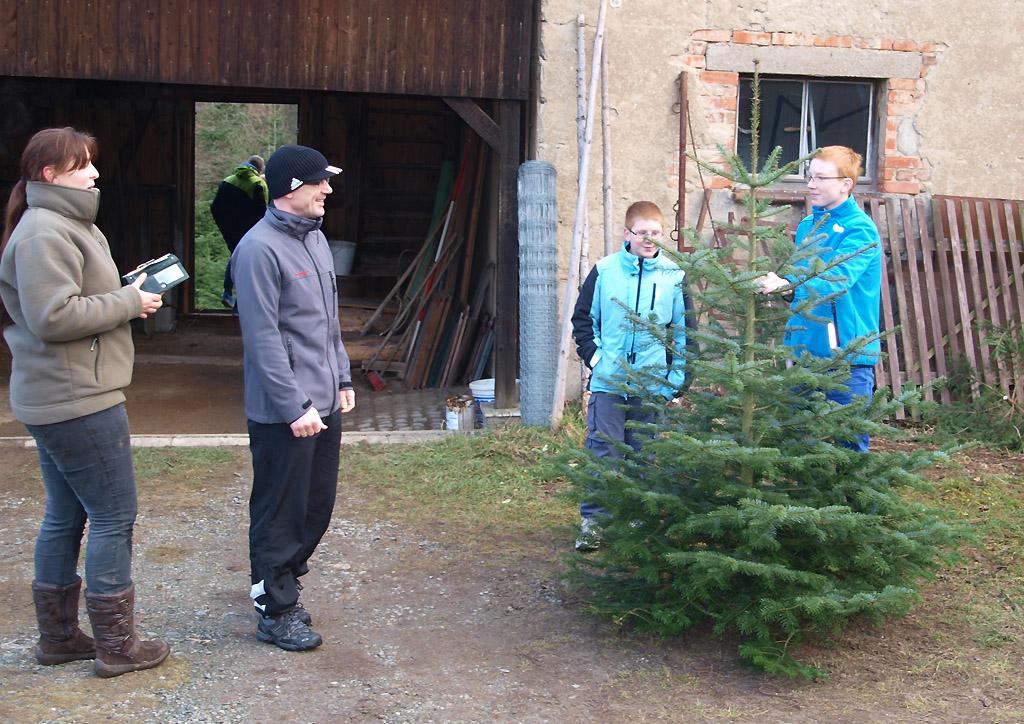 Revierförsterei Gommla verzeichnet viele Besucher beim Weihnachtsbaumverkauf