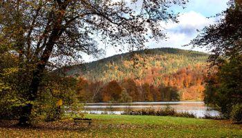 Herbststimmung im Fürstlich Greizer Park