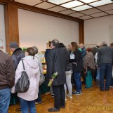Zierfischbörse: Von Guppys bis Garnelen