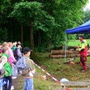 Waldjugendspiele 2018: Ein Schultag im Freien