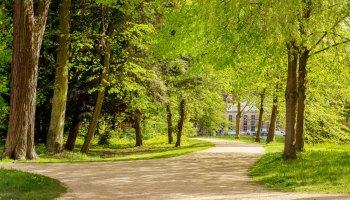 Weg im Greizer Park an der Luftbrücke