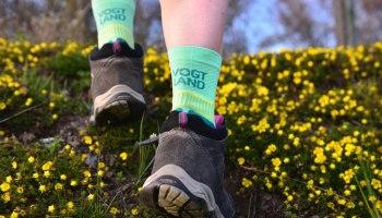 Vogtland-Socken