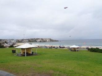 Bondi Beach 13092014 (3)