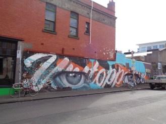 Melbourne Fitzroy (8)