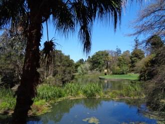 Royal Botanic Garden Melbourne (1)