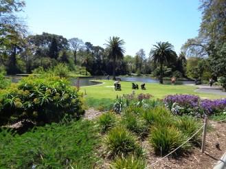 Royal Botanic Garden Melbourne (4)