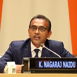 Ambassador K. Nagaraj Naidu
