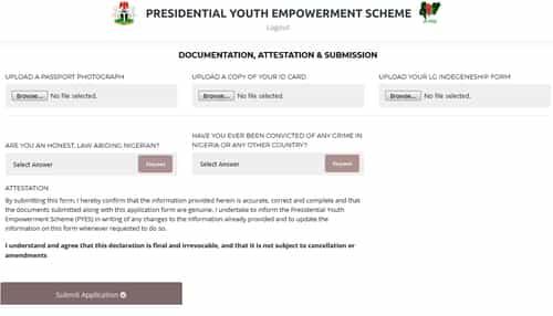 p-yes application form submission