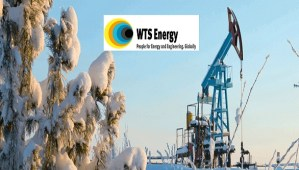 wts energy nigeria