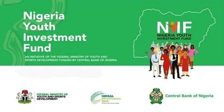 NYIF portal Upgrade for completion of our application » Voice of Nigeria