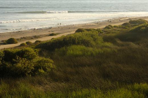 watershed-beach