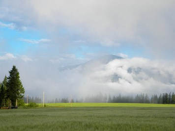 From the Beiler's house...the mountains enveloped in the fog
