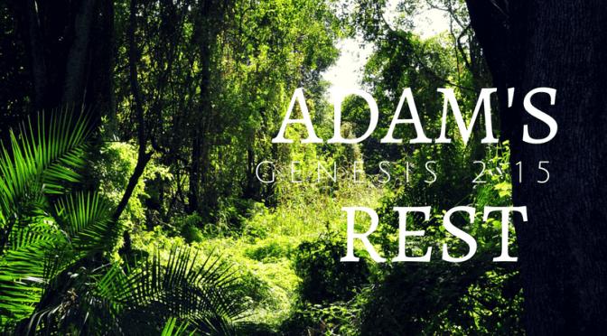 Adam's Rest
