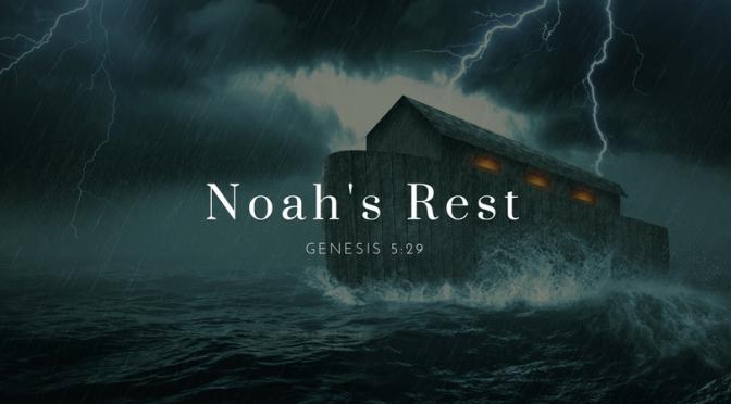 Noah's Rest