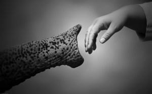 """""""Walking Together"""" Antje Wenner"""