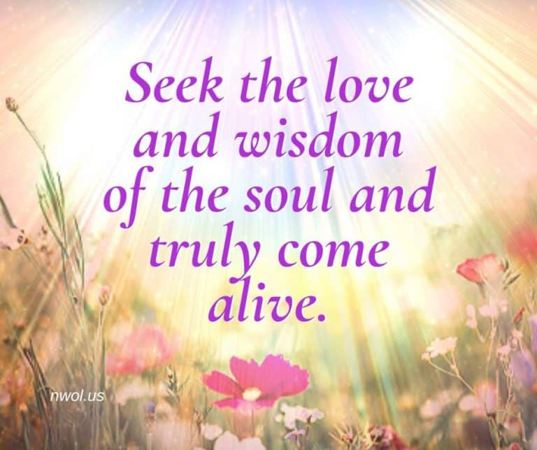 Seek-the-love-and-wisdom-of-the-soul-2-251-768x644