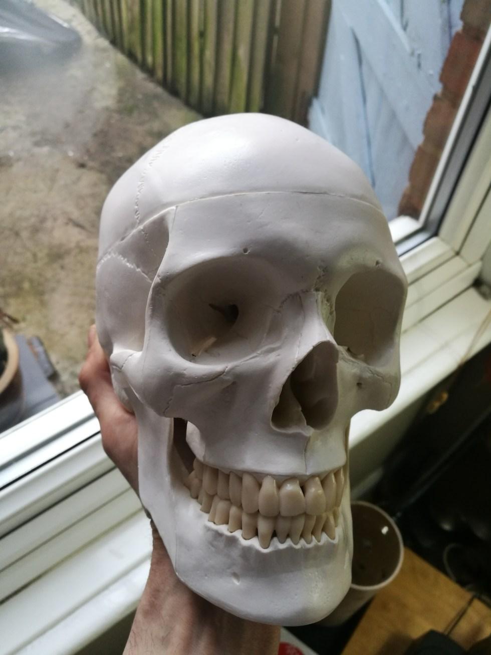 Void One - Skull