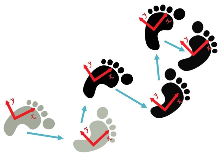nao-footstep-planning