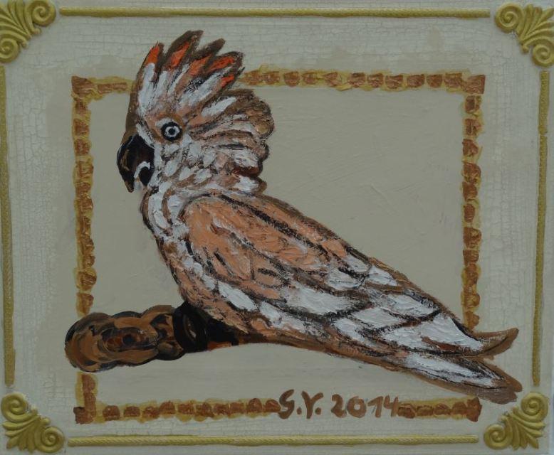 Kakadu I (verkauft)