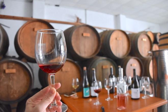 malaga wine tasting