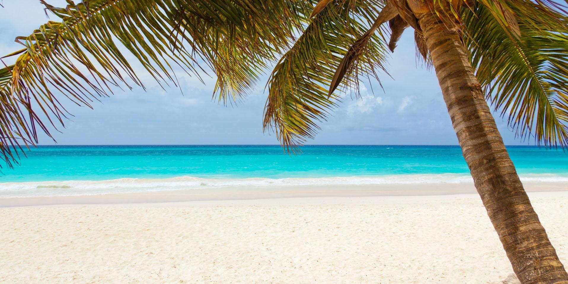 S'évader avec Voiles Caraïbes