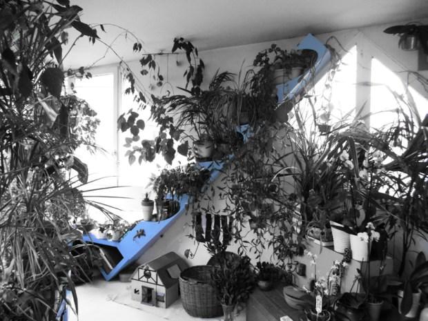 Des bancs sur mesure pour les plantes de sa véranda