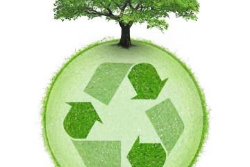 recyclage avec arbre