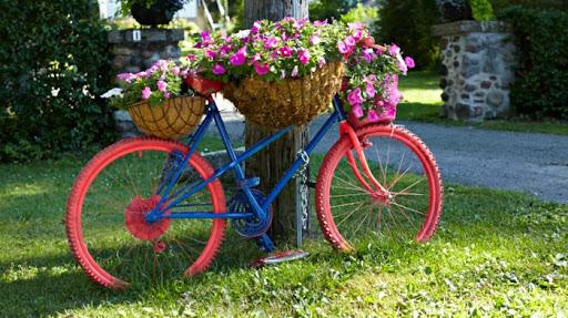 velo fleurs