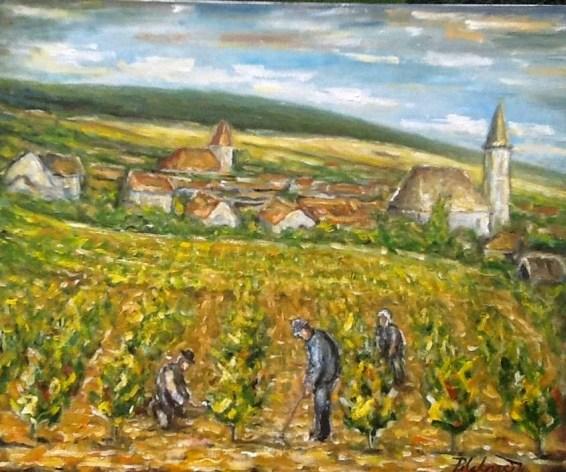 Práca do vinohrade