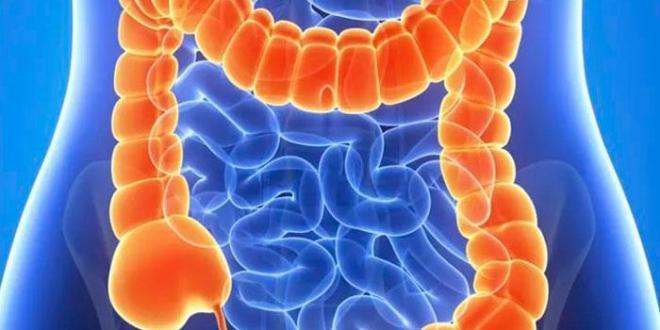 Лечение полипов желудка
