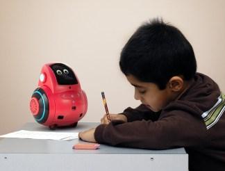 India Robotics Startup Miko Raises Rs 23 Cr in Pre-Series B Round Led by Stride Ventures